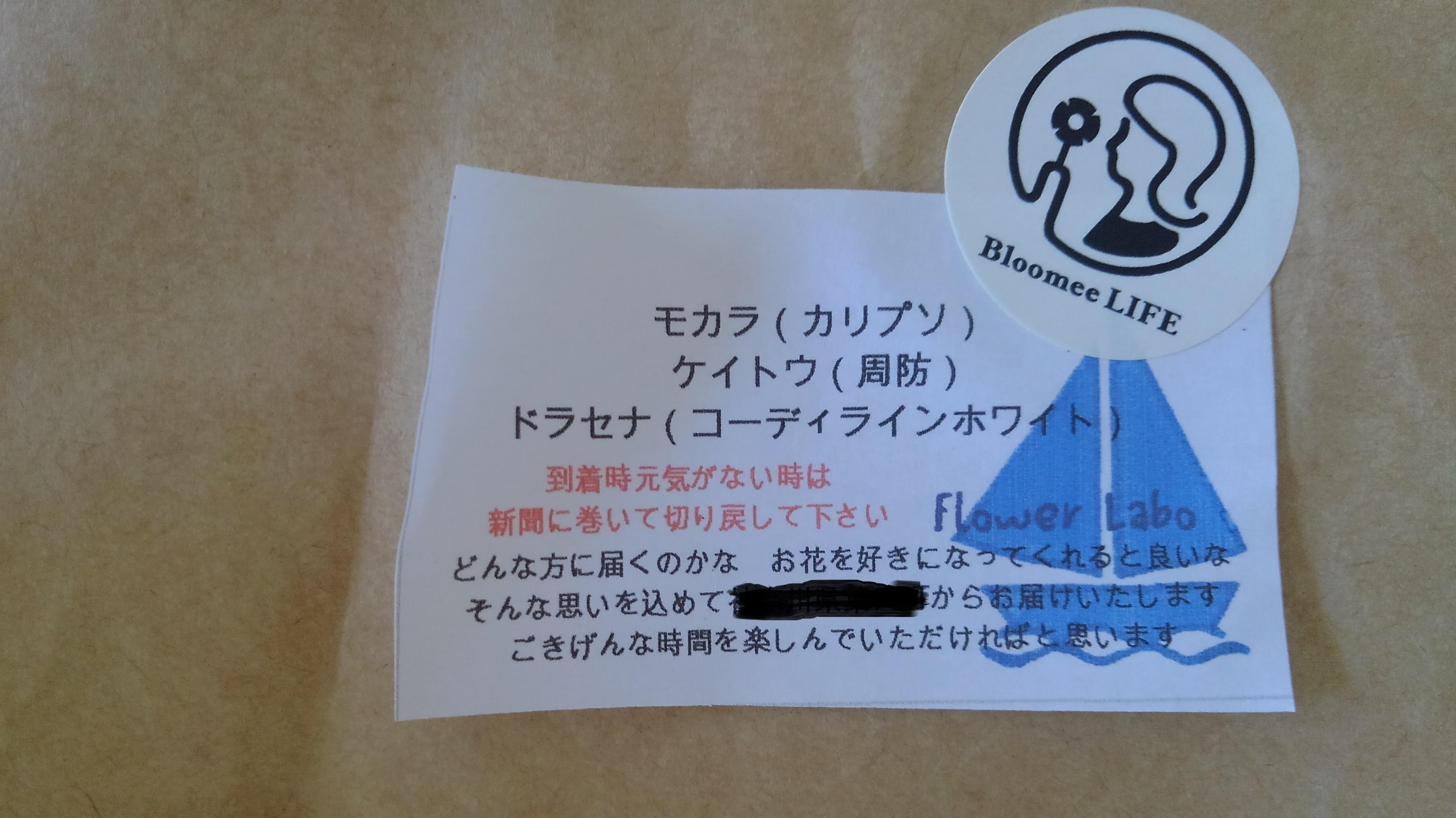 ブルーミーライフ体験プランに同梱のメッセージカード